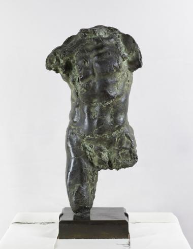 Rodin, Torse d'homme, PPS1256