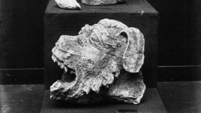 Gargouilles et fragments de la cathédrale de Soissons